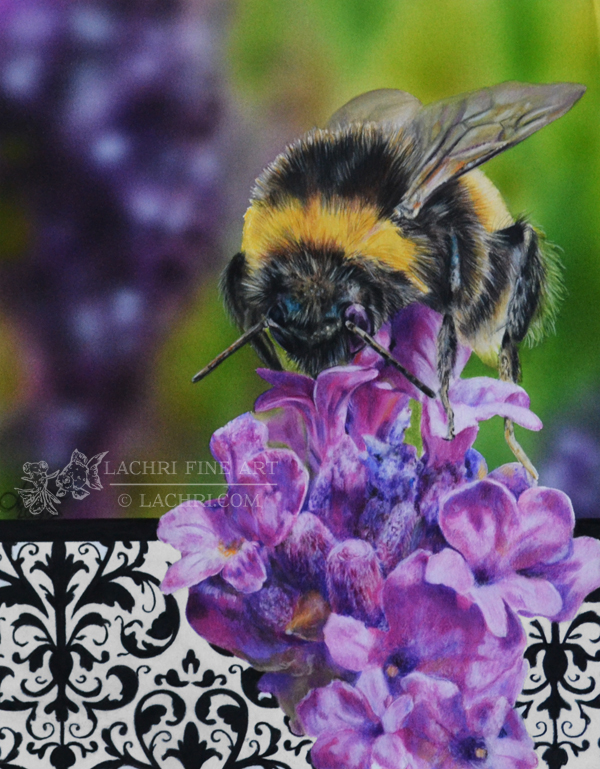 Bee in colored pencil