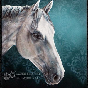 blog-featured-image-horse