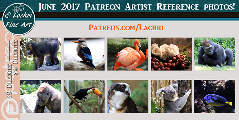 Patreon - Lachri Fine Art