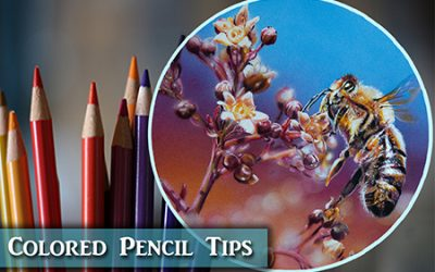 Colored Pencil & Mixed Media Tips