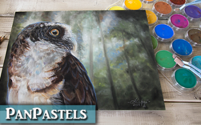 PanPastel Review & Drawing an Owl