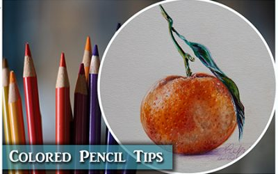 Colored Pencil Tips & Bonus Plant Tour
