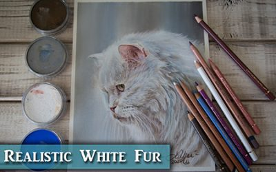 Tips for drawing white fur in colored pencil & Pan Pastels