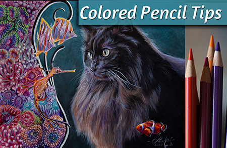 Colored Pencil Tips – Cat & Coral