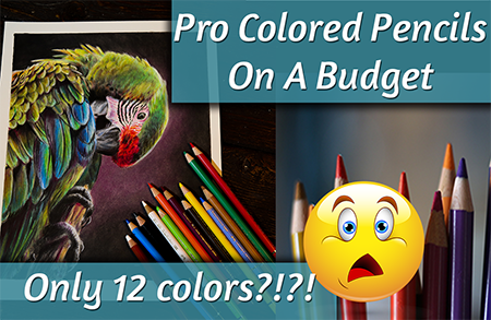 Pro Colored Pencils on a Budget! Only 12 colors!