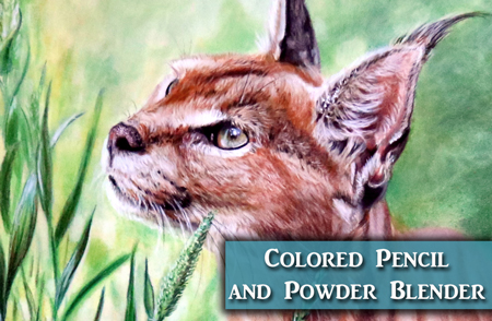 Caracal Colored Pencil & Powder Blender Demonstration
