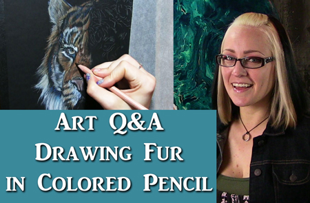 Art Q&A Drawing Fur