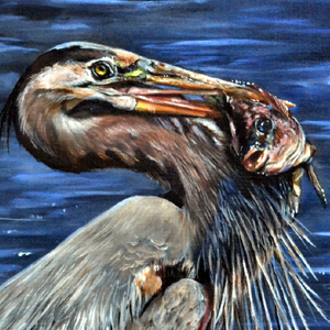 Great Blue Heron Oil Painting Demonstration
