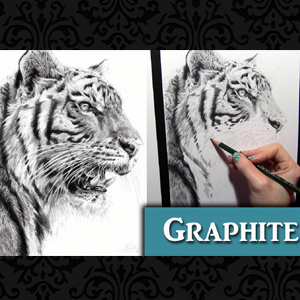 Faber-Castell 9000 Graphite review and Tiger Drawing