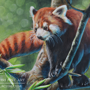 Red Panda painting with Inktense