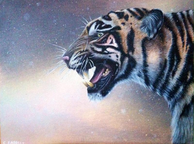 blog-tiger