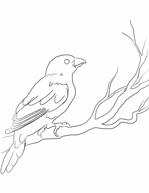 pop-art-bird-line-drawing
